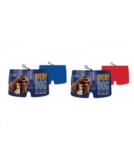 Box 10pz Costumi Pets - PETCOS2