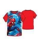 Box 12pz  T Shirt Spiderman - SPIBO6