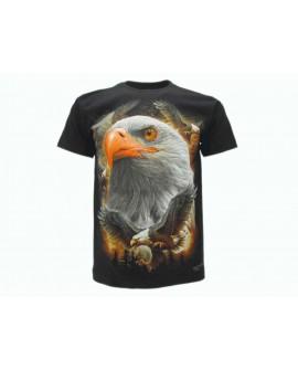 T-Shirt Animali - ANAQ2