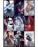 Poster Star Wars  PP34182 - PSSW5