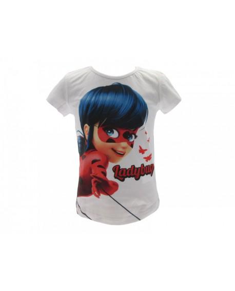 Box 8pz T Shirt Miraculous - MIRBO4