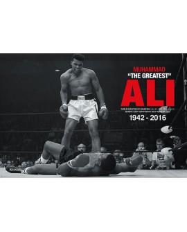 Poster Muhammad Ali PP33903 - PSMA1