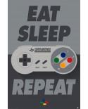 Poster Nintendo PP34240 - PSSMB2