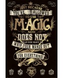 Poster Harry Potter PP33920 - PSHP4