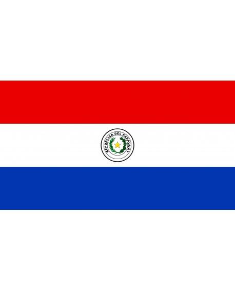 Bandiera Paraguay 100X140 - BANPAR