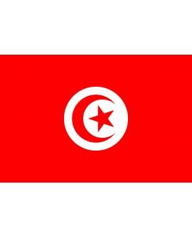 Bandiera Tunisia 100X140 - BANTUN