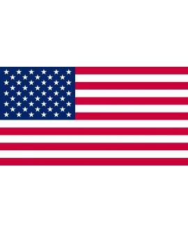 Bandiera Stati Uniti d'America 100X140 - BANUSA